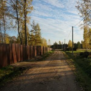 Участок c газом граничит с лесом