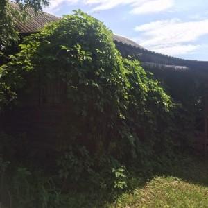 Продам бревенчатый дом в Переславском районе